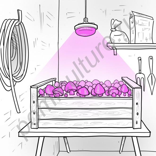 """Лампа для растений цокольная (Е14/Е27/Е40) с активным охлаждением светодиода """"Акубенс"""" 20Вт (аналог китайской лампы для растений мощностью 45Вт)"""
