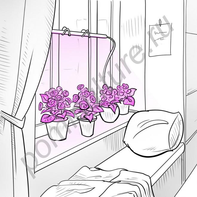 """Фитосветильник светодиодный с присосками """"Домашний садовод"""""""